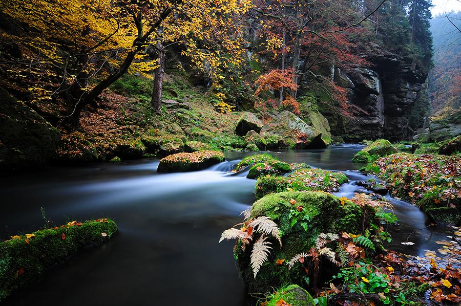 Údolí říčky Kamenice