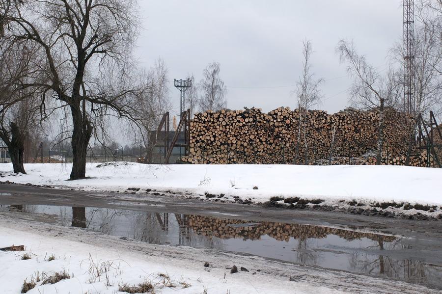 Cestou k ústí jsme míjeli obrovské sklady dřeva. Přemýšlím, jak skladování přeje místní vlhké klima.