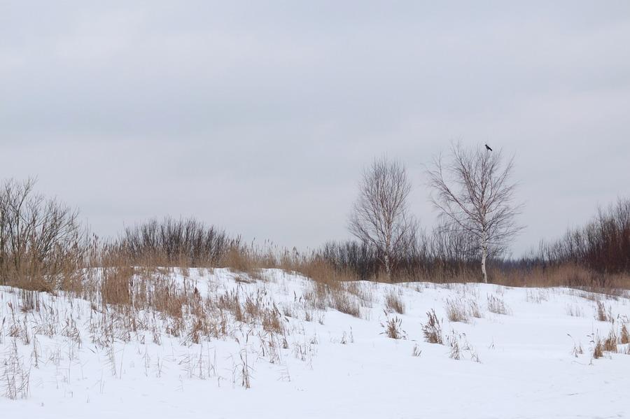 lotyssko-balt-2013-25