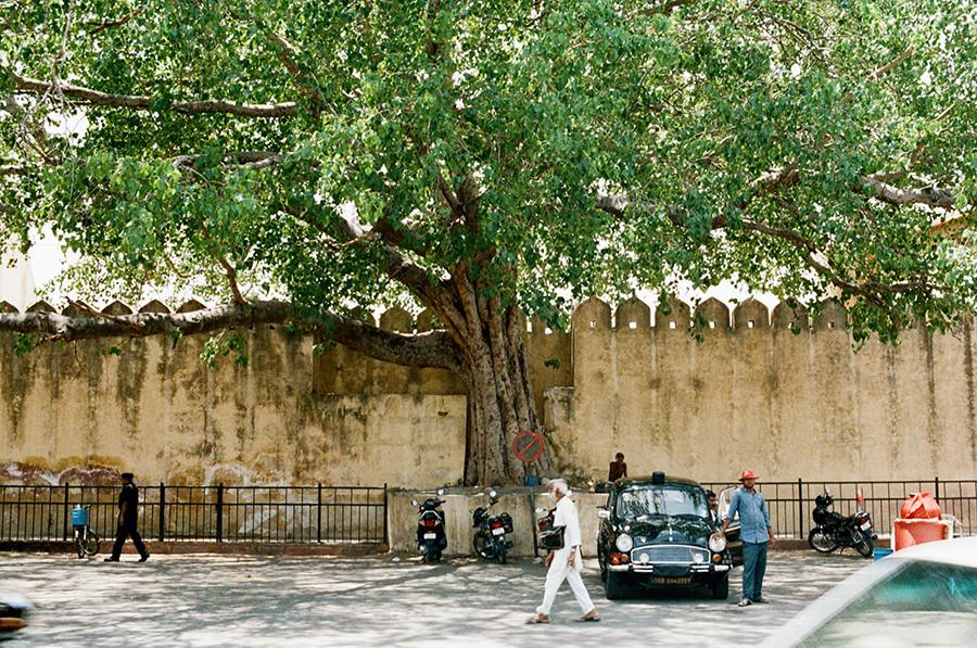 Jaipur, Indie
