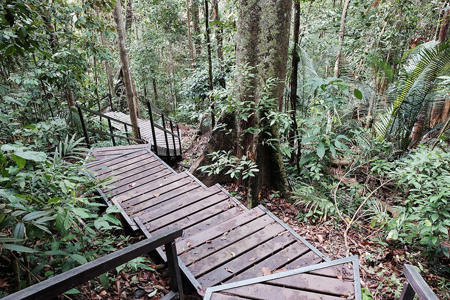 Taman Negara, Malajsie