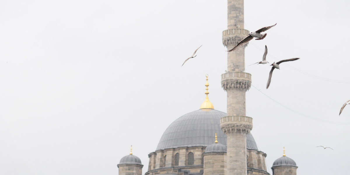 Turecko/Istanbul 2010