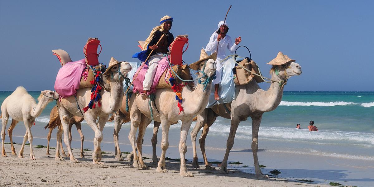 Vzpomínka na Tunisko