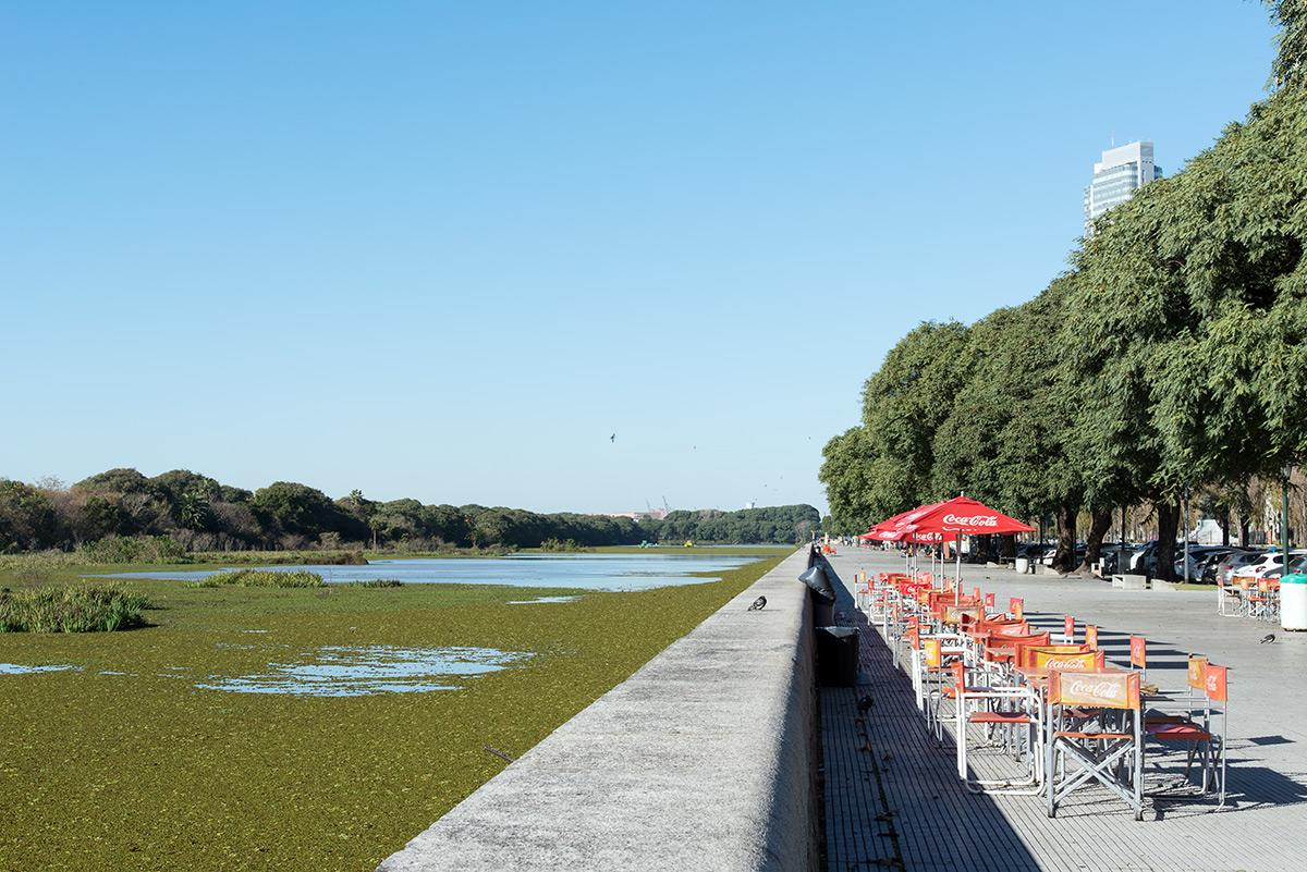 mokřady a zeleň v Puerto Madero, Buenos Aires, Argentina