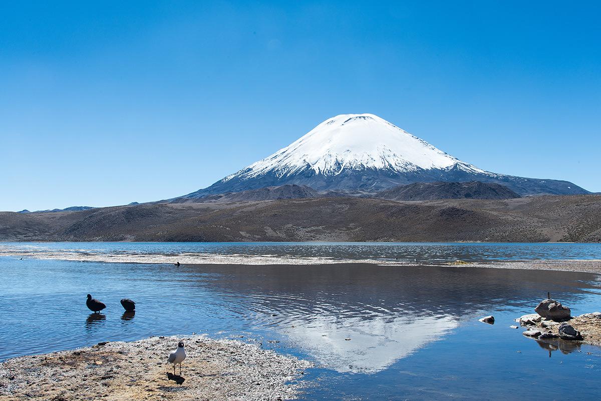 NP Lauca, Chile